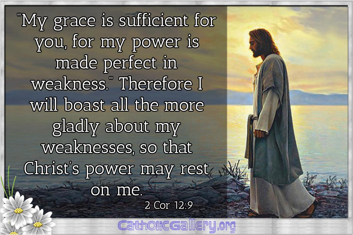 Quotes From Bible Pictures Page 1 Catholic Gallery