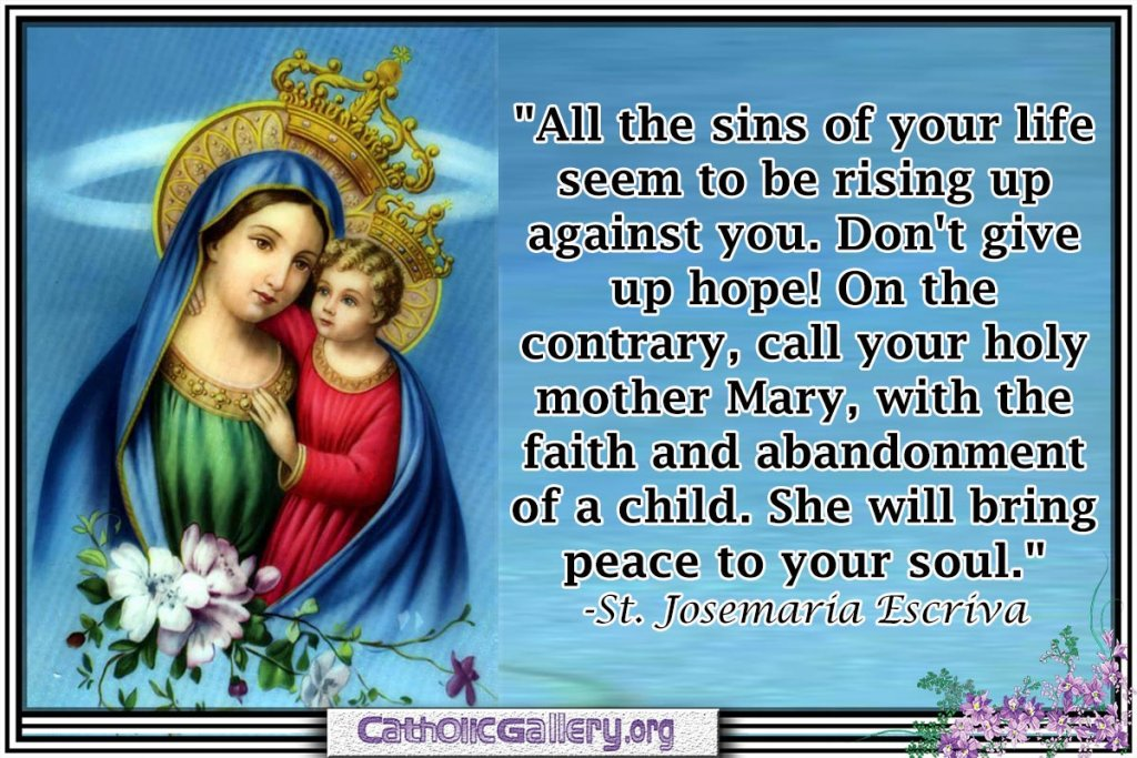 All-the-sins_Mary-Quotes