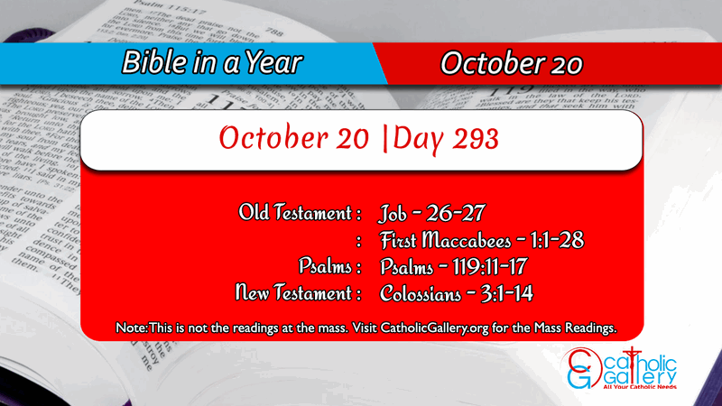 Bible In A Year October 20 Day 293 Catholic Gallery